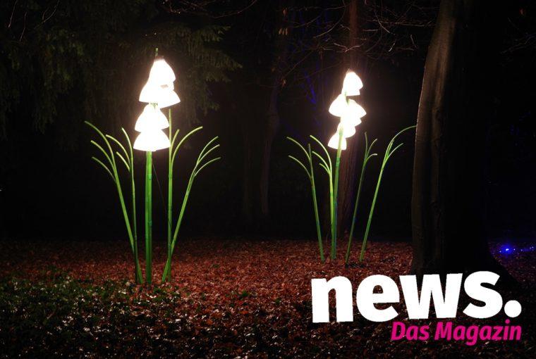 Neujahrsleuchten im Botanischer Garten Minden