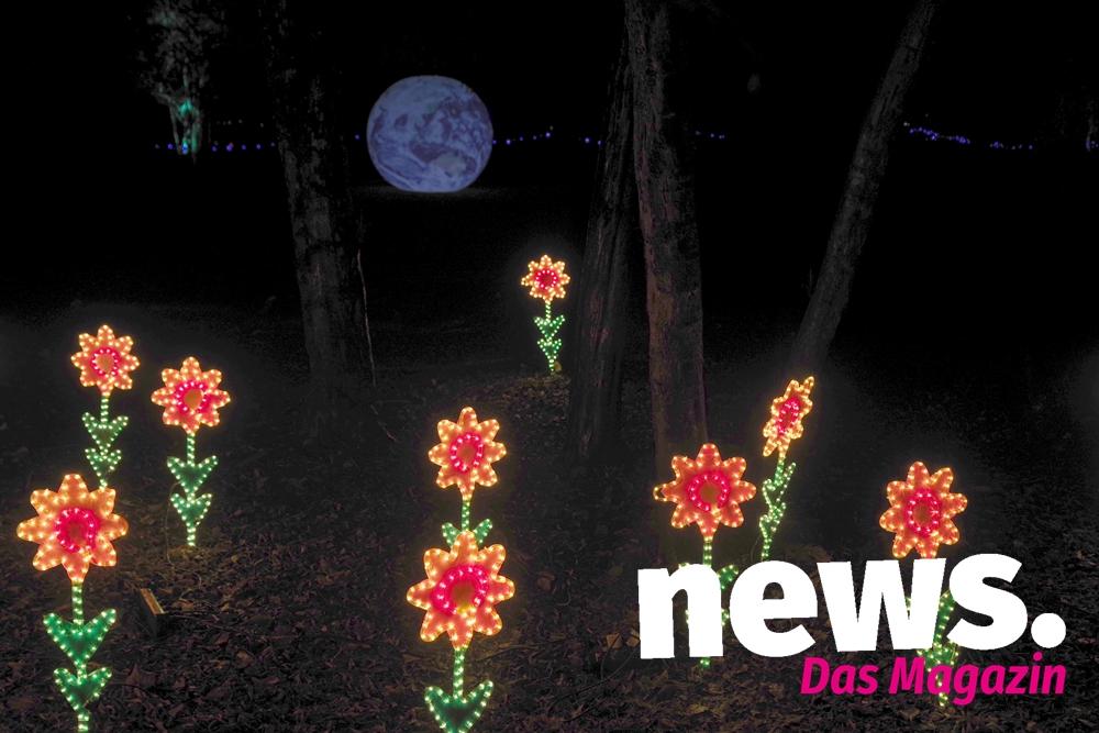 Neujahrsleuchten Im Botanischen Garten News Das Magazin
