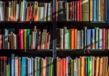 Büchertipps für den Juli