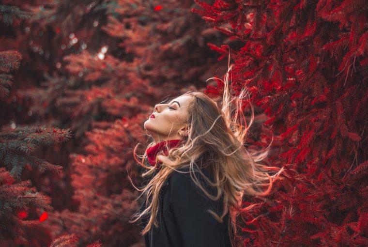 Schönen Herbst