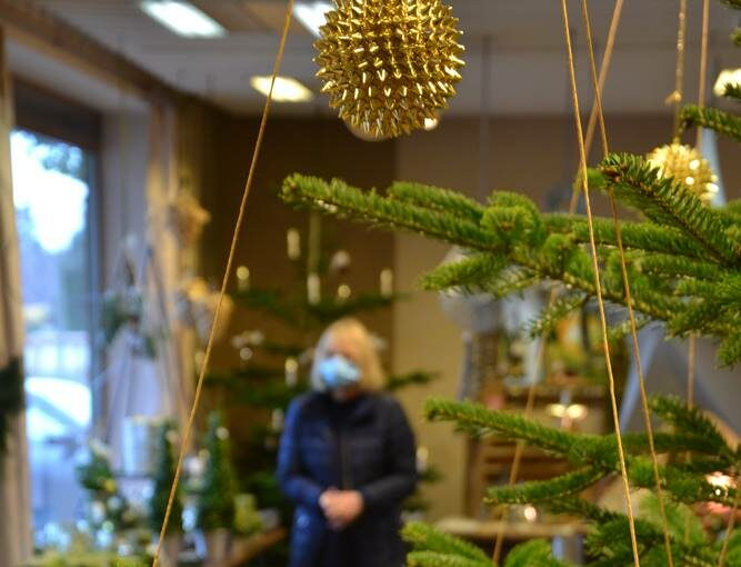 2020 - Weihnachts-Ausstellung bei Blumen Pohlmann in Petershagen-Lahde