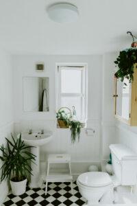 Kleines Badezimmer mit Pflanzen